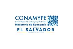 conamype